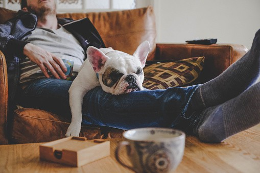 SelfcarewithdogGettyImages-1160996835